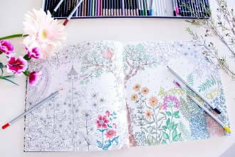 irenevanguin-lifestyle-blog-stress-free-in-2015-colouring-for-adults-mijn-geheime-tuin-tekenboek