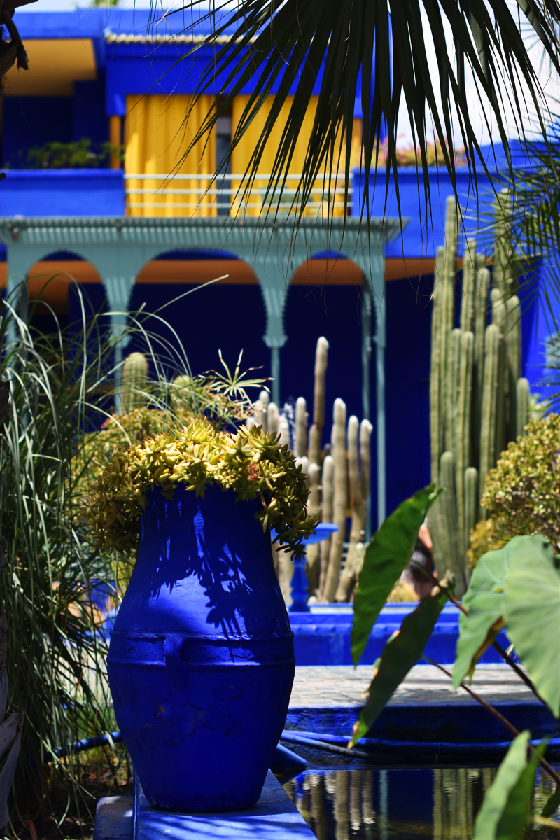 marrakech-travel-when-in-hotspot-irene-van-guin-majorelle-jardin-yves-saint-laurent-garden-morroco-jacques-ysl-garden