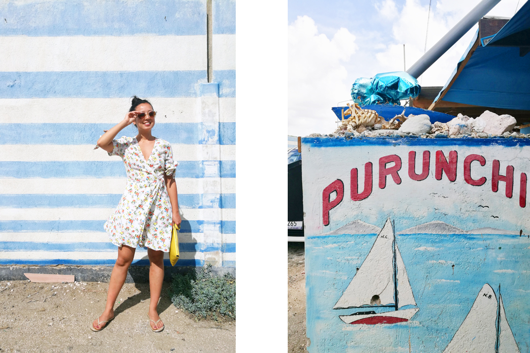 hotspots-curacao-travel-blog-restaurants-irene-van-guin-influencer-purunchi-fish