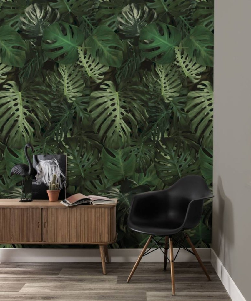 kek-amsterdam-monstera-leaves-wp-500-behang-974-x